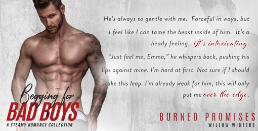 Burned Promises – Willow Winters