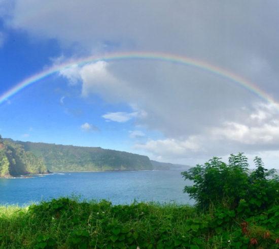 ODT HI 18 Rainbow