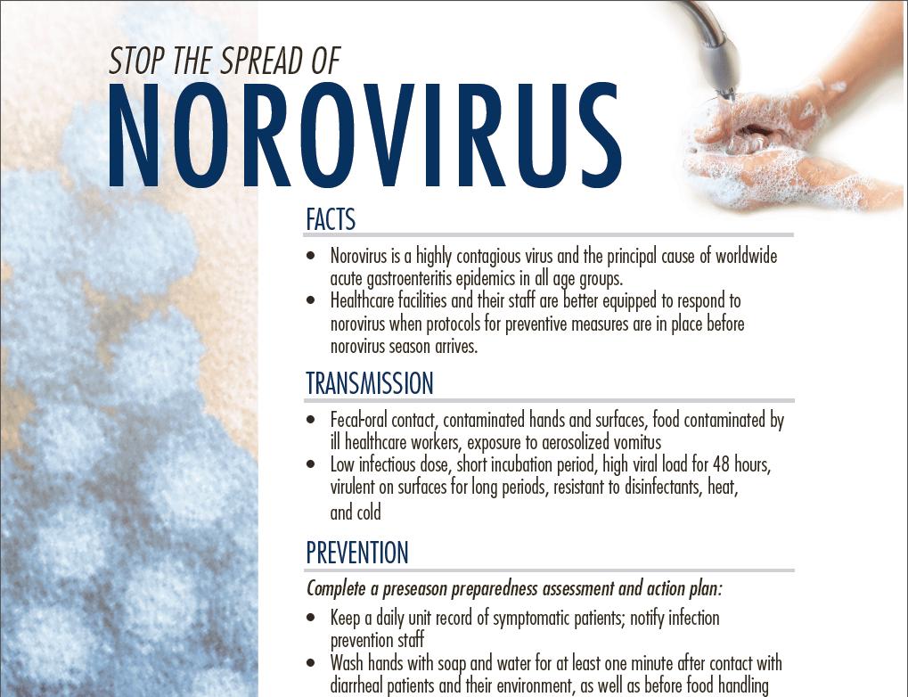Norovirus Contagious
