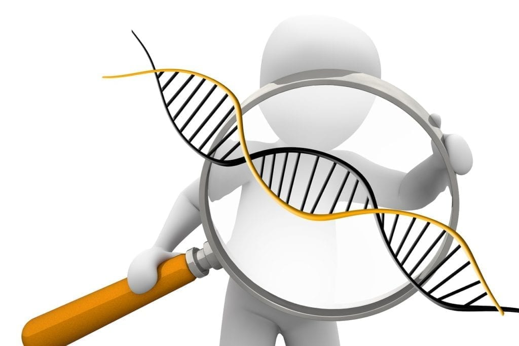 Researchers Have Discovered The Genetic Cause of Idiopathic Pulmonary Fibrosis