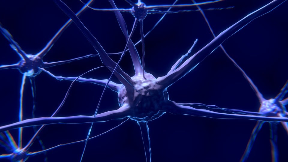 Recent Research Has Led to a New Approach For Treating Huntington's Disease