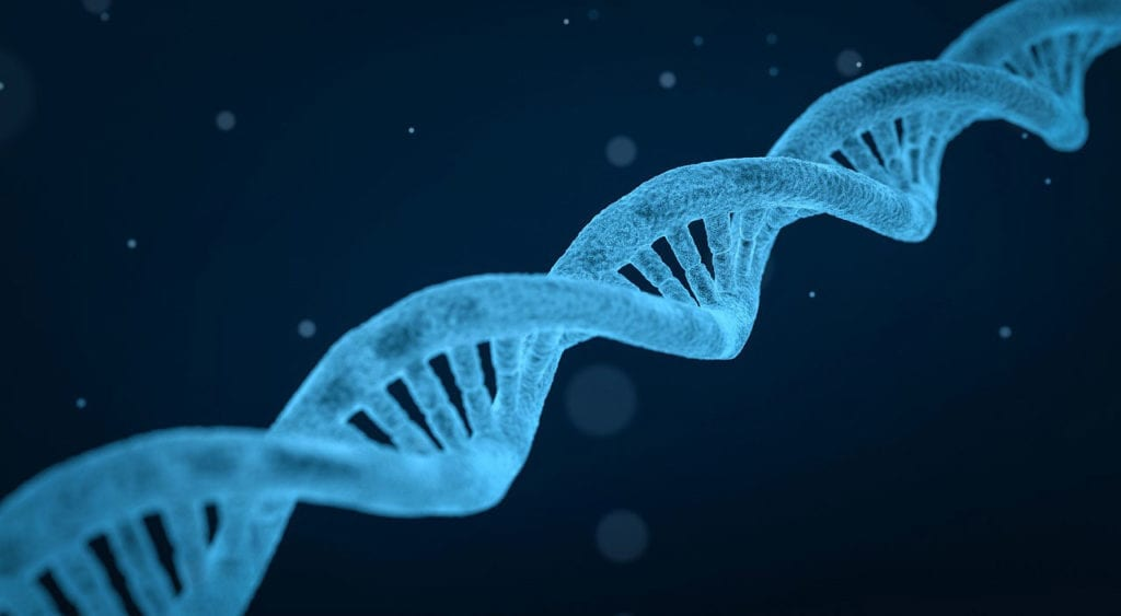 Gene Therapies for Pompe Disease and Other Rare Diseases are in Development