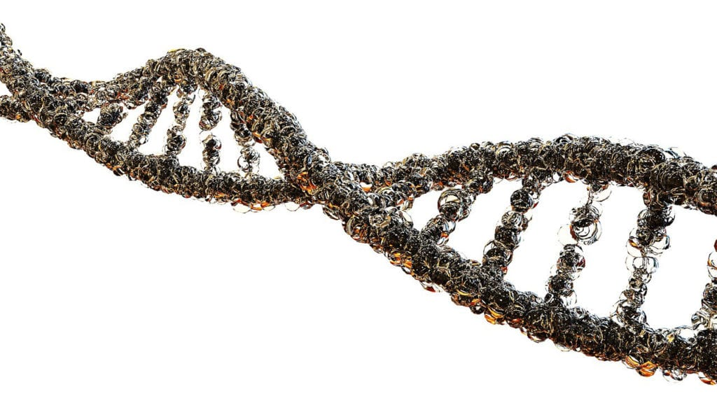 Hereditary Angioedema Discovery is First Step Toward Gene Therapy