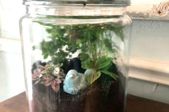 I love terrariums