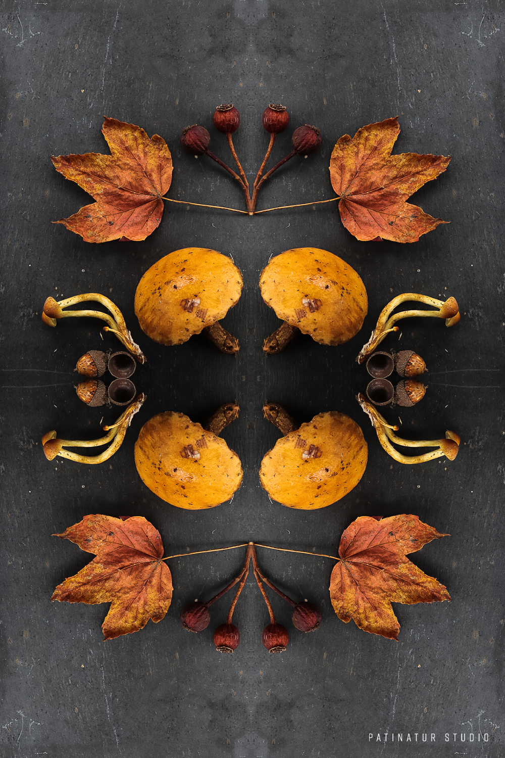 Photo art | Botanical caleidoscope in yellow, orange and red
