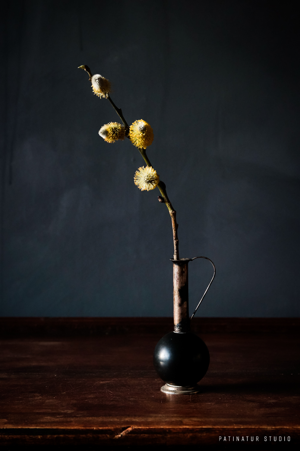 Photo art | Dark and moody still life with yellow pussy willow branch
