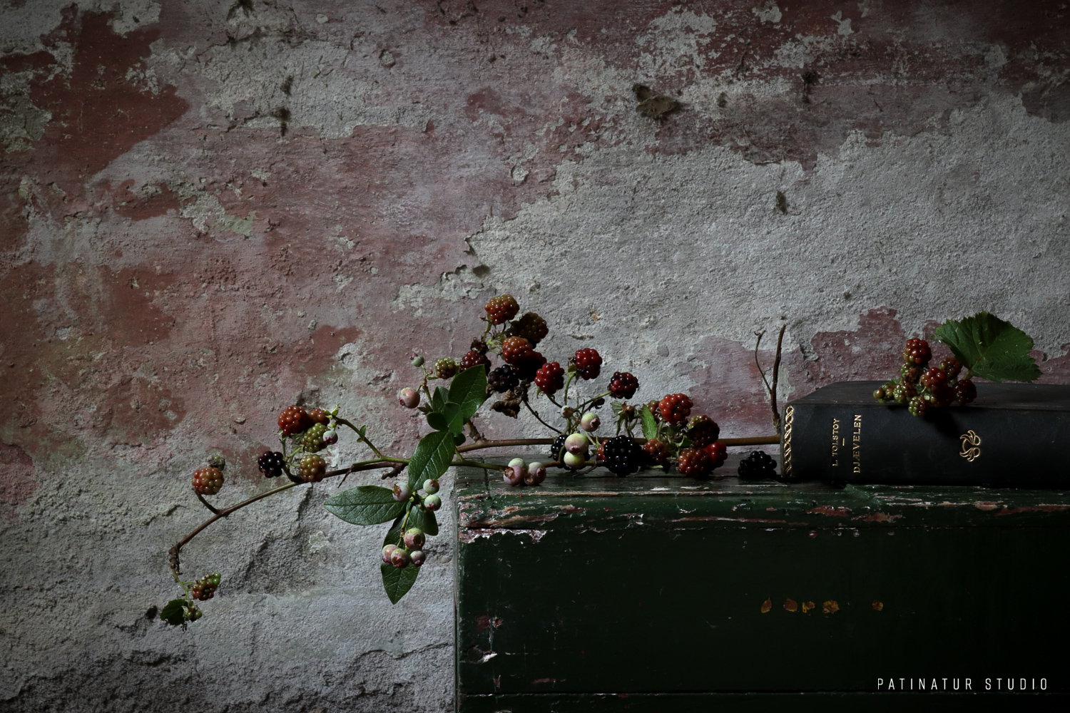 Photo Art: Moody and rustic still life photo with berry branches and book