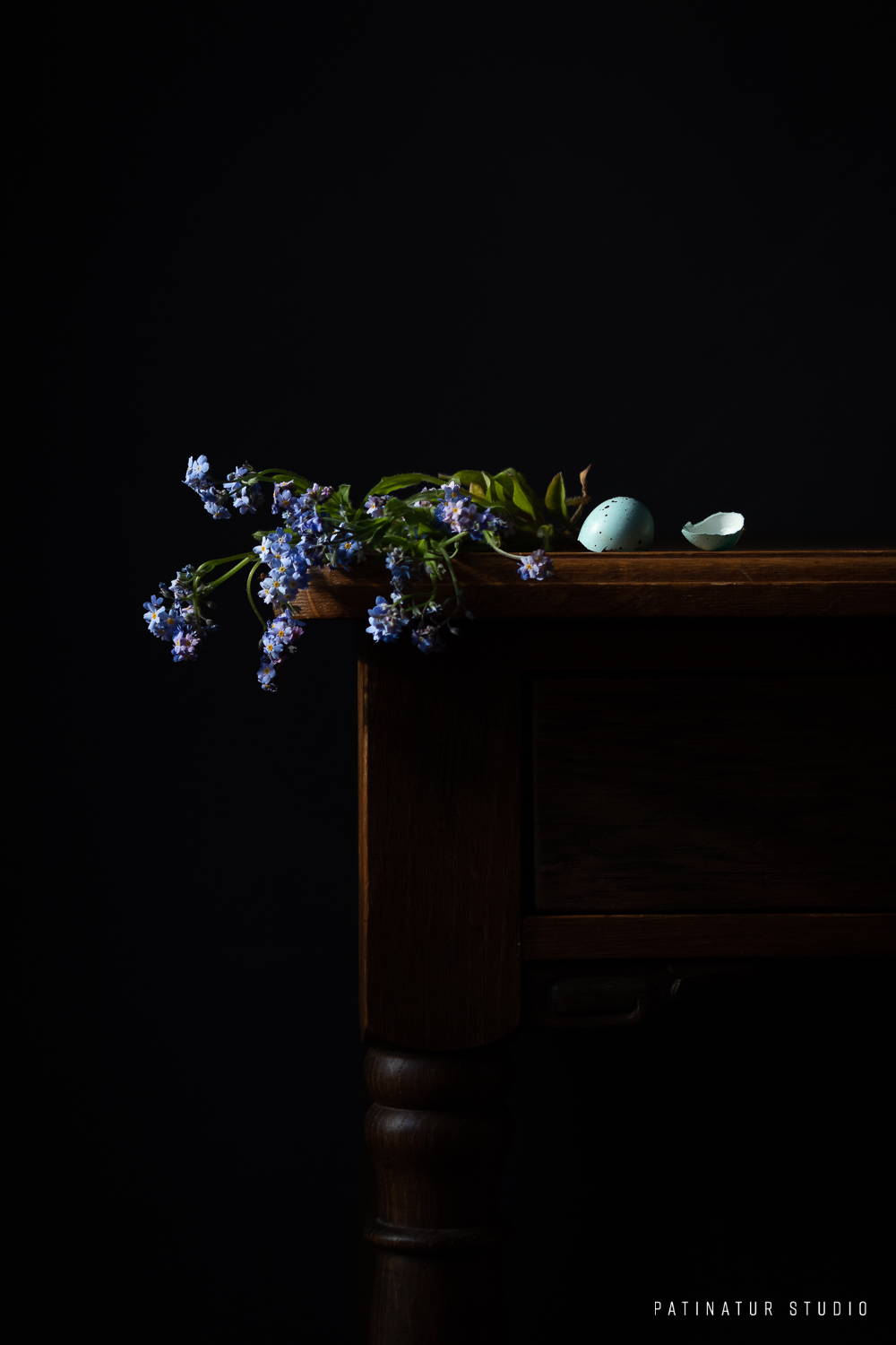 Photo art | Dark and moody still life with Forget-Me-Nots and green bird's egg shells