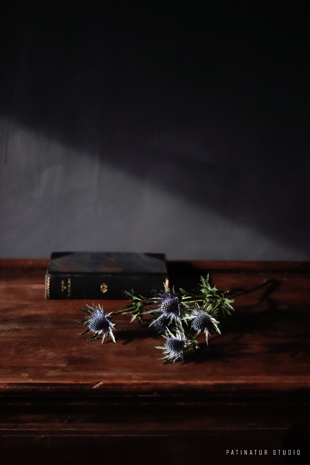 Photo Art | Dark and moody still life with flower and vintage edition of Tolstoy's 'The Devil'