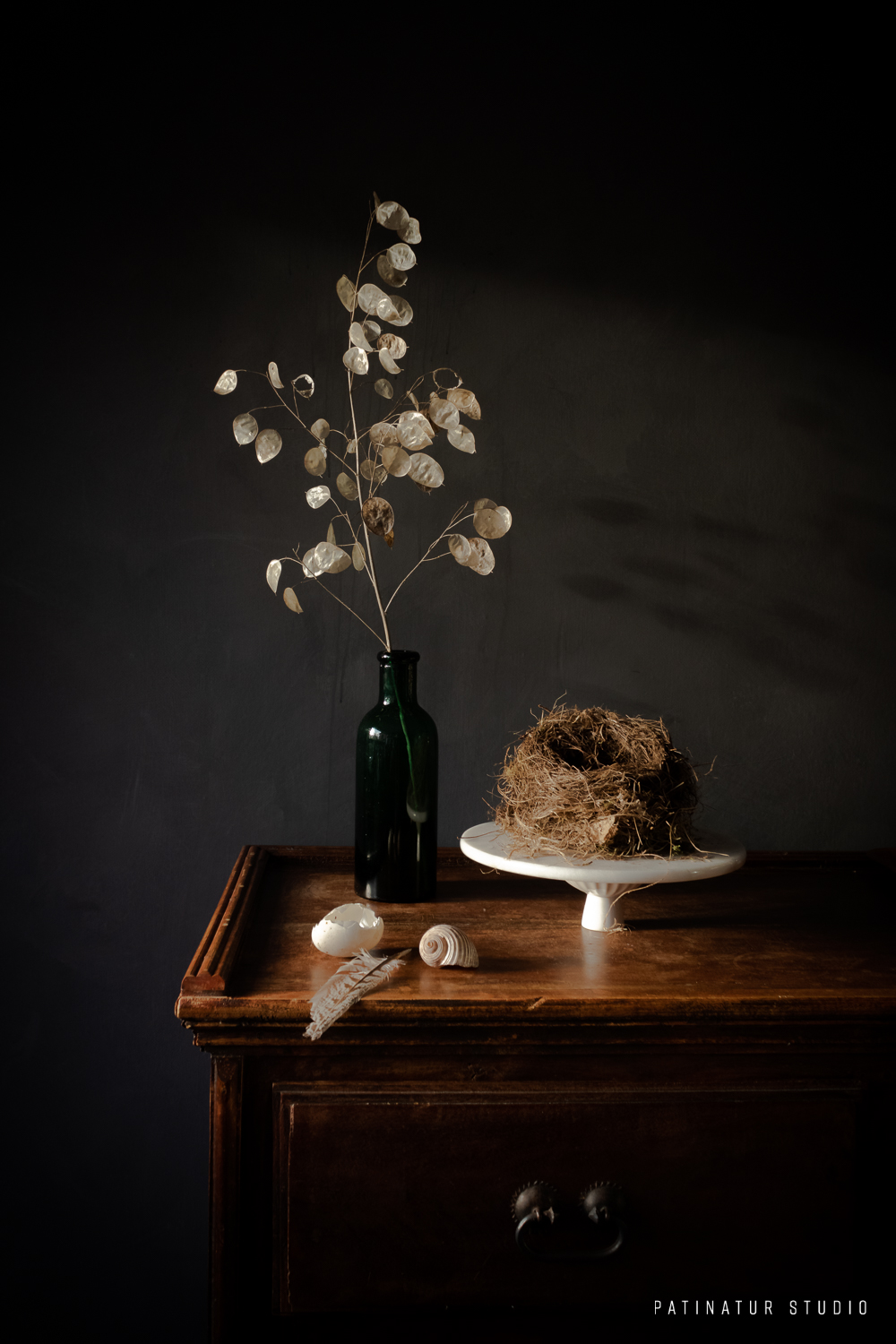 Photo Art | Dark and moody still life with nature's waste