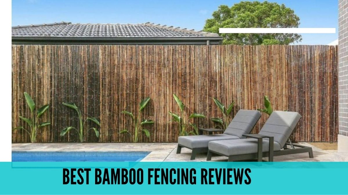 best bamboo fencing reviews for 2021