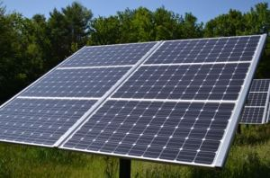 Best Outdoor Solar Lights - Pic 2