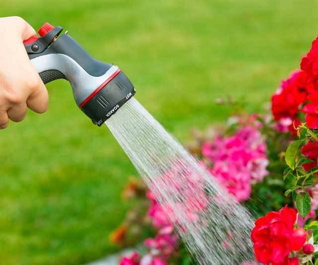 Best Garden Hoses – Buyer's Guide