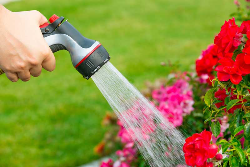 Best Garden Hose – Buyer's Guide