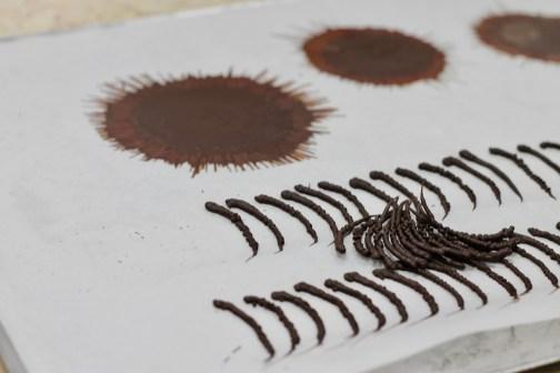 ספלאש וגבעולי שוקולד