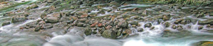 Brietenbush Creek Rocks in Stream copy