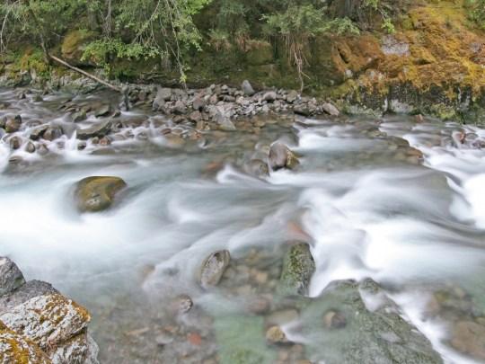 Brietenbush Creek rapids in motion