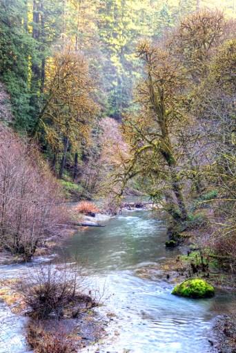 Redwood Creek Ca copy
