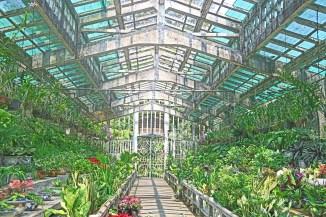 hcmc boranical garden greenhouse