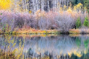 Wood River Autumn Reflectiions