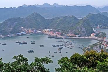 Catba Harbor