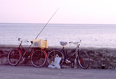 Cu Bikes Fishing pole