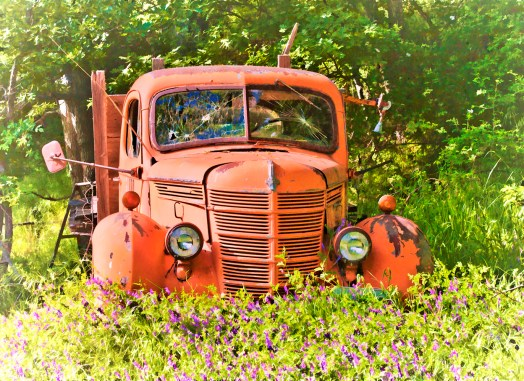 Truck Portrait with Vetch