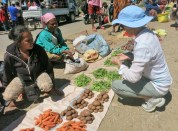 Pip exercises her negotiating skills in the Maubisse vege market.