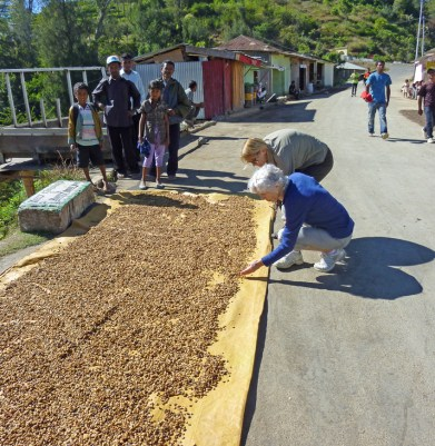 Del and I check out coffee beans drying on the road.