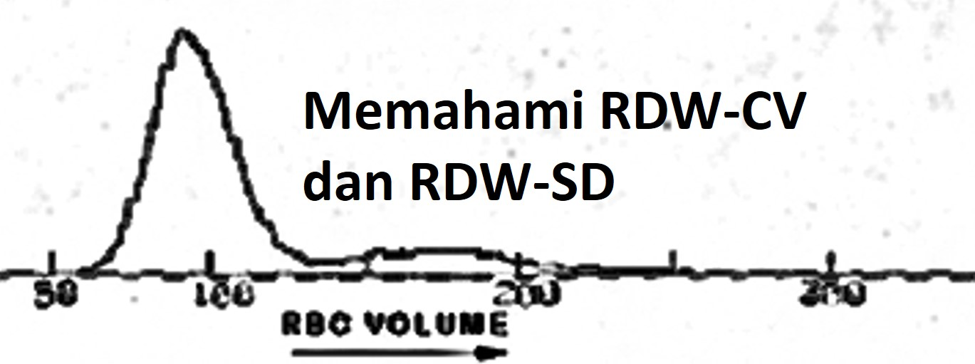 rdw front