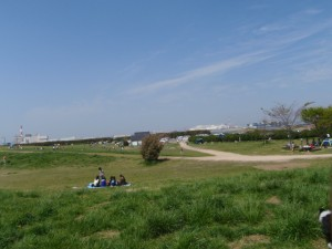 p4120073
