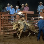 Bull Riding Rodeo, Lebanon, USA