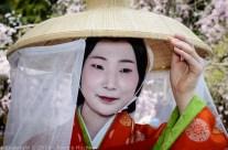 Ôka Matsuri at the Hirano jinja, Kyoto
