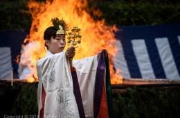 Cérémonie Hitakisai au sanctuaire Fushimi Inari Taisha, Kyoto