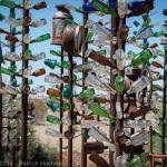 Le Ranch Bottle Tree d'Elmer, Californie