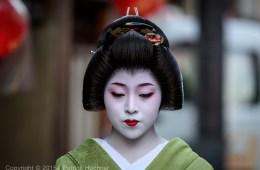 Geiko in Miyagawa-Cho, Kyoto