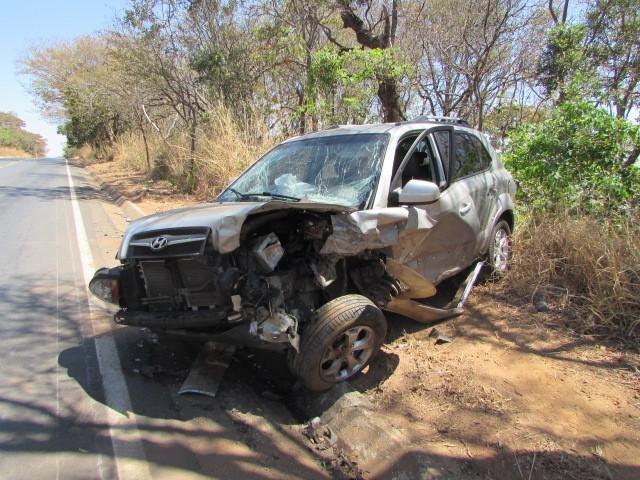 Cachorros na rodovia causam acidente com três vítimas na MG-410