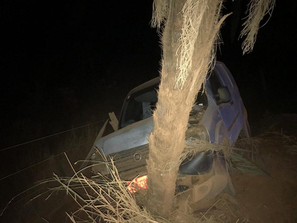 Veículo bate em coqueiro e motorista culpa a poeira