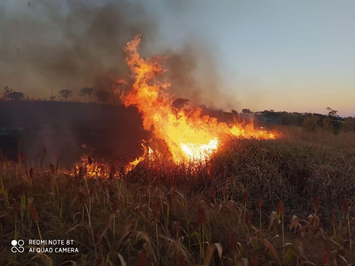 Incêndio fazenda de Patos de Minas