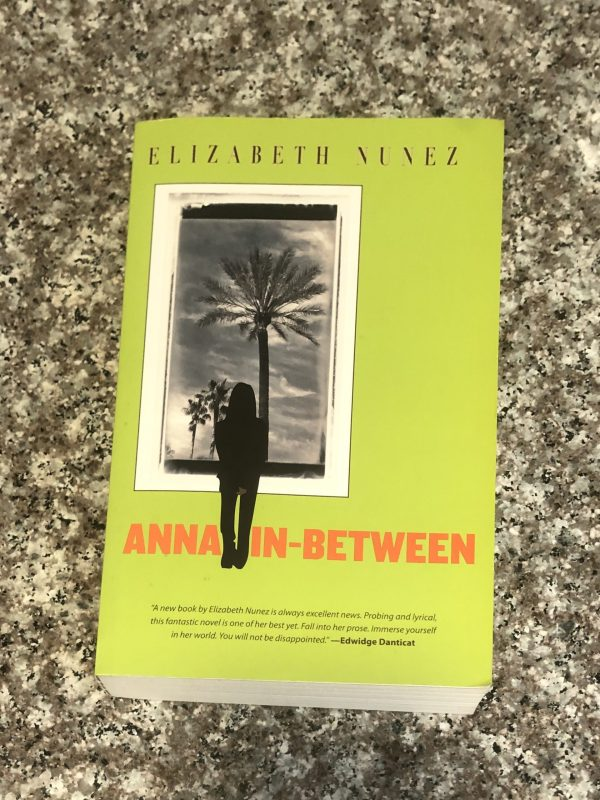 paperback book anna in-between