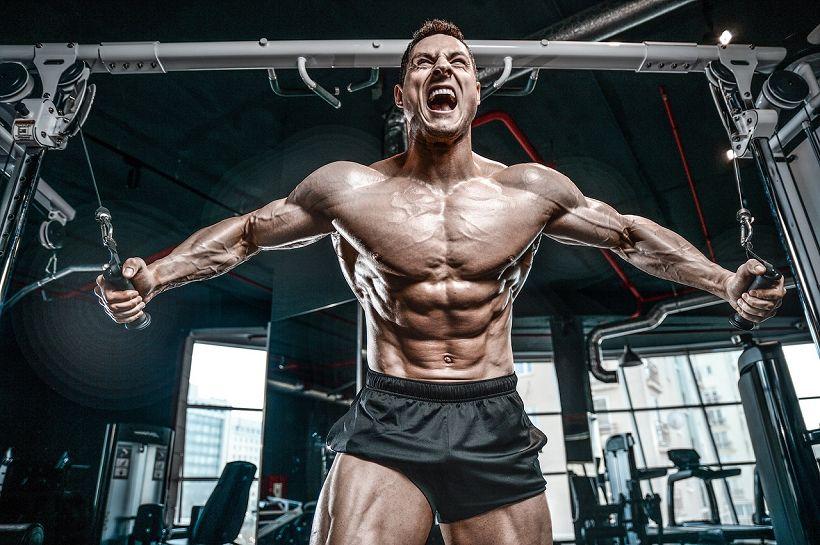 Training bis zum Muskelversagen für bessere Muskelzuwächse?