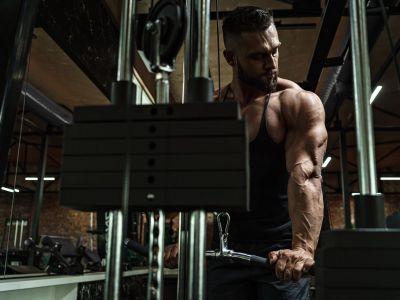 Isolationsübungen für Muskelaufbau: Eine sinnvolle Ergänzung (wenn du bereits mit Grundübungen trainierst)?