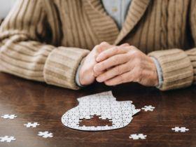 Cholin zum Schutz vor Demenz und zur Steigerung der kognitiven Leistungsfähigkeit?
