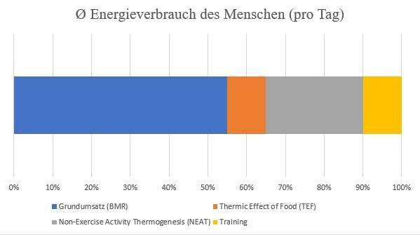 Der tägliche Energieverbrauch des Menschen in Anlehnung an Ravussin und Bogardus (1989) sowie Westerterp (2013).