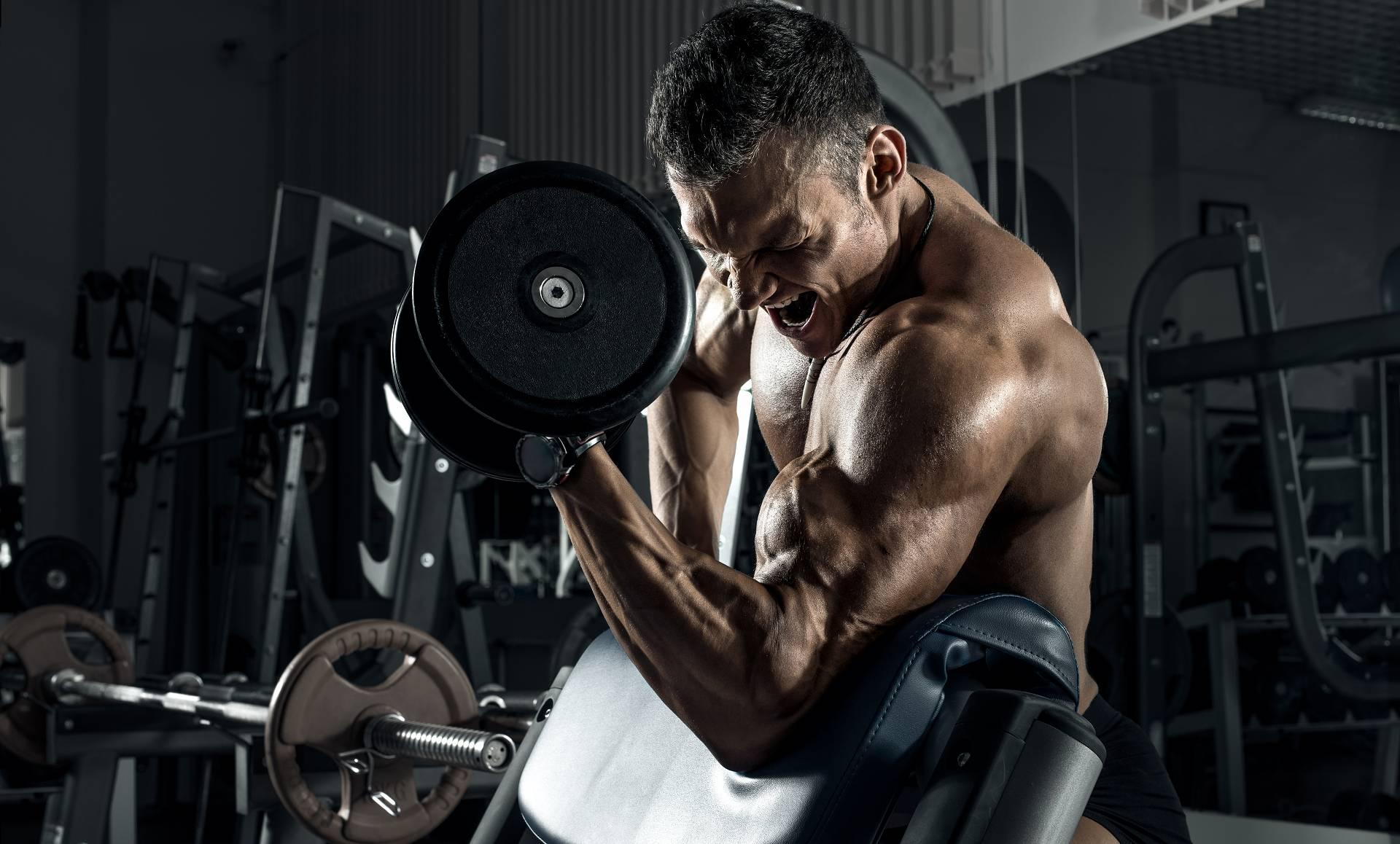 Training bis zum Muskelversagen: Hat es eine stärkere Auswirkung auf die Erschöpfung des zentralen Nervensystems?