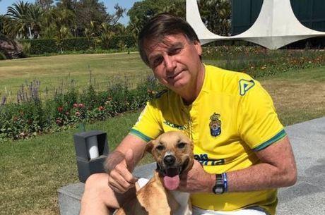 Bolsonaro vai sancionar projeto que aumenta pena a maus-tratos a cães.