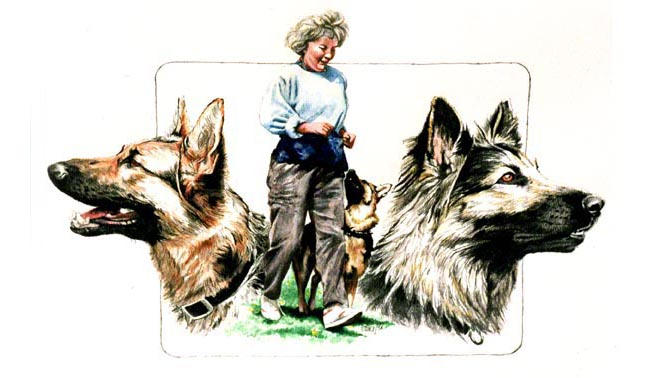 Siegrun's Painting of herself and her beloved dogs, Rex and Asta. She commissioned this artwork as a Christmas present for her husband.