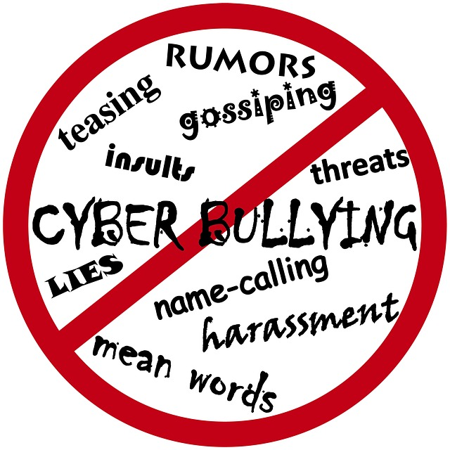 Cyber Bullying: A growing concern for high school teens