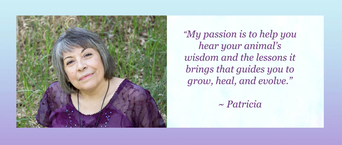 AC Website Patricia Pic Mission Quoate6