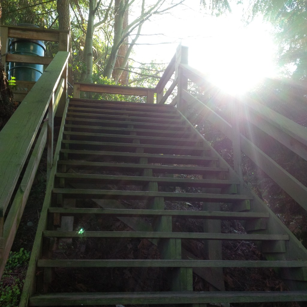 Seabold stairs 2